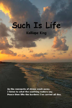 Such_Is_Life_Book_Cover_a.jpg